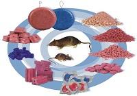 Отравление родентицидами (крысиный яд)