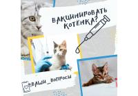 Вакцинировать котенка?